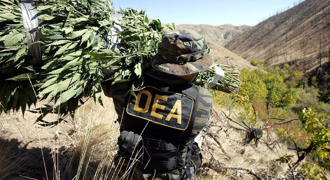 "Doctor Sues the DEA Over a ""Secret Law"" Blocking Cannabis Research"