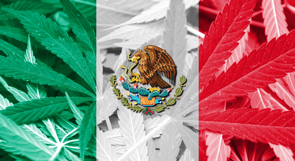 Mexico Is Aiming to Legalize Weed to Soften the Economic Blow of Coronavirus