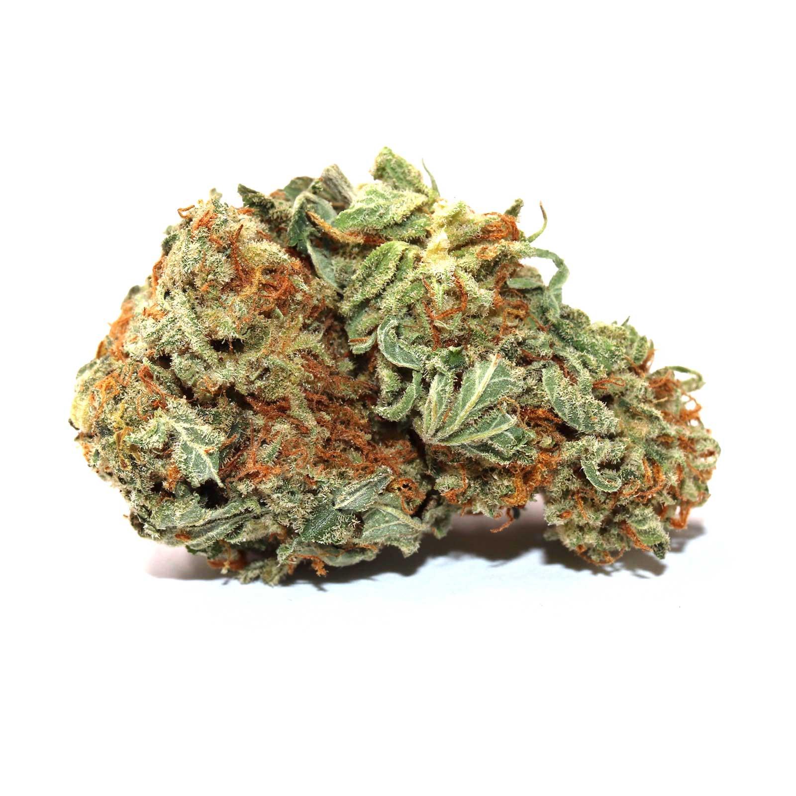 1589581740856_scooby-doo-strain-buy-weed-online-canada.jpg