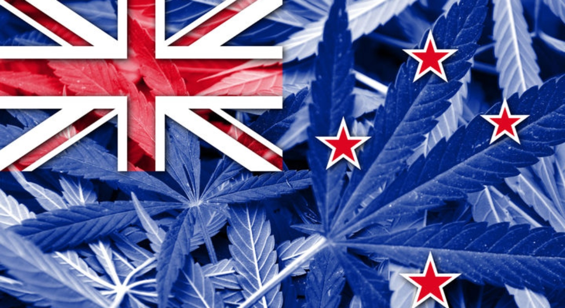 Legalizing Cannabis Could Bring New Zealand $500 Million In Annual Tax Revenue