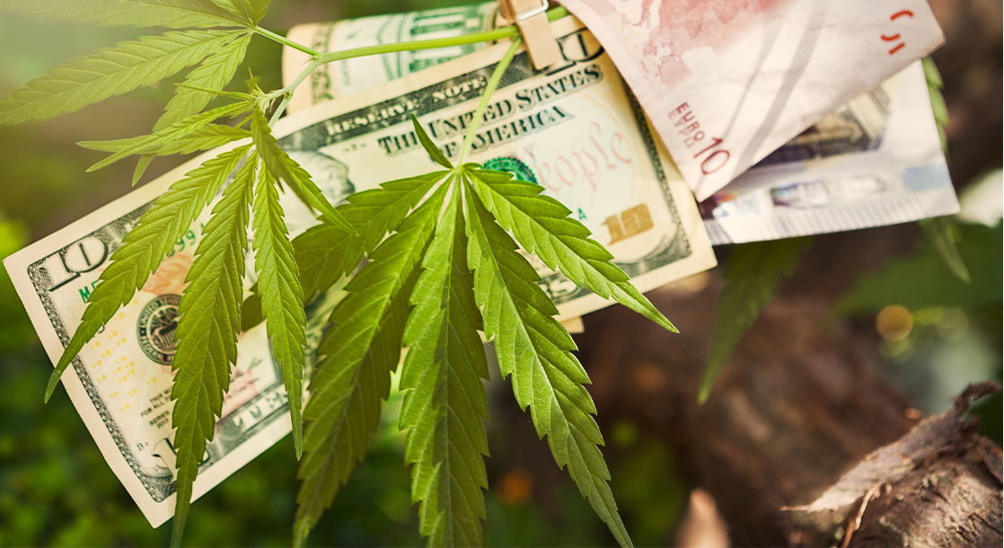 Economist Says Legal Weed Taxes Could Pay 88% of a Colorado City's Budget Hole