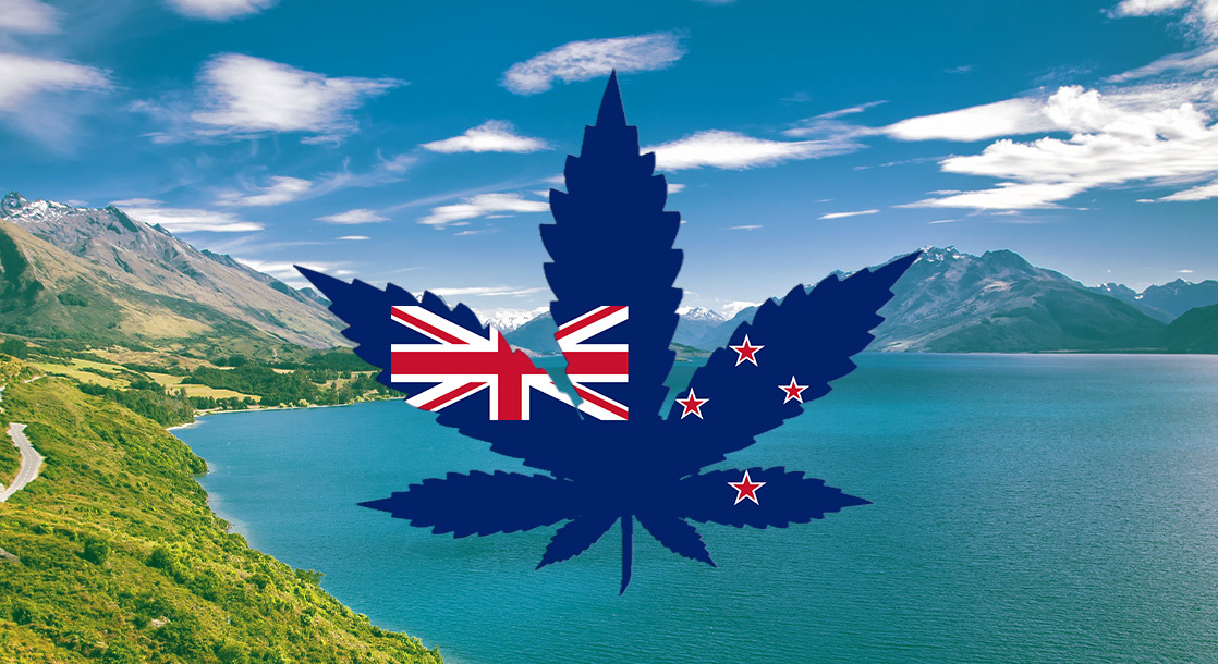 """56% of New Zealanders Say They'll Vote """"Yes"""" on Weed Legalization This Fall"""