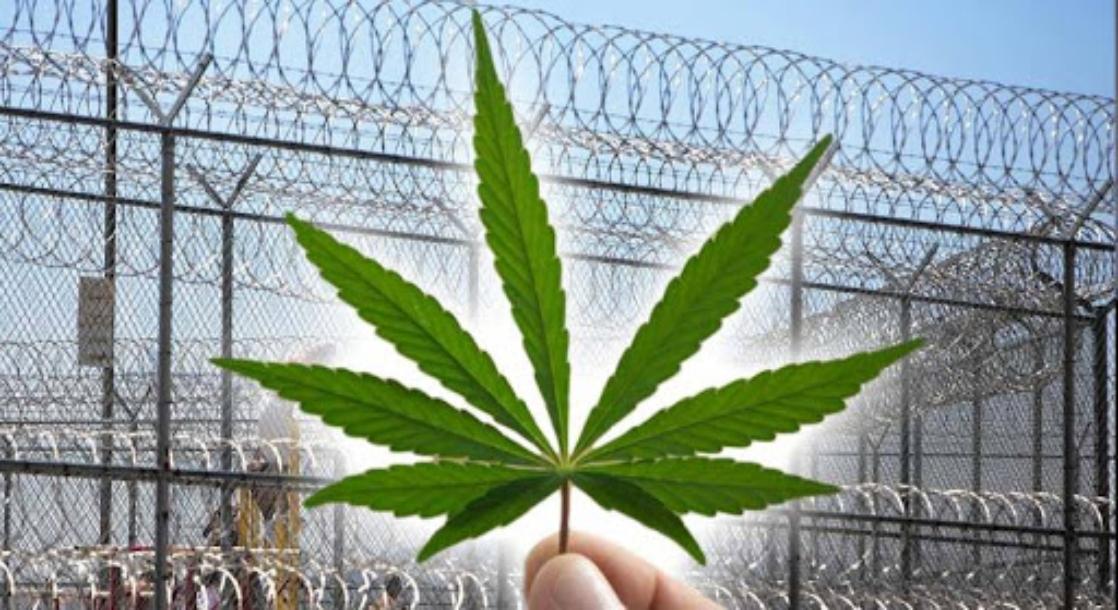 Nashville DA to Stop Prosecuting Minor Pot Possession, Effective Immediately