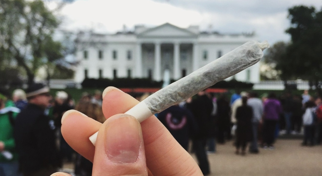 DC Activists Just Launched Last Minute Campaign to Get Legal Weed Sales on 2020 Ballot