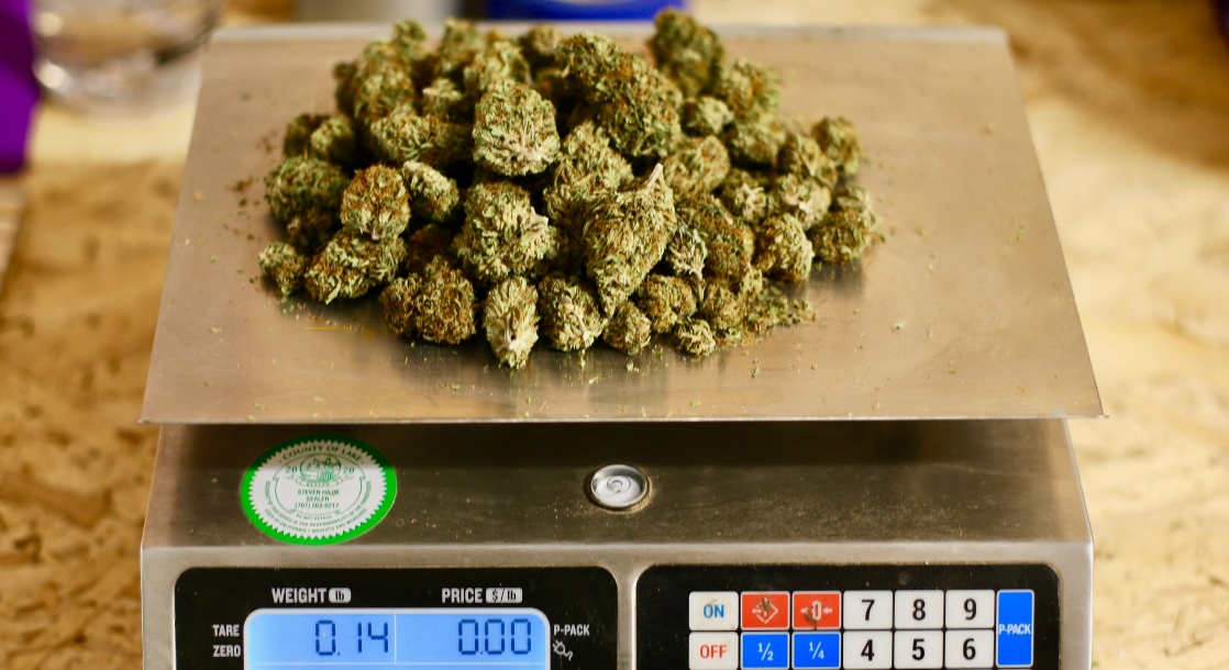 how many grams in a pound