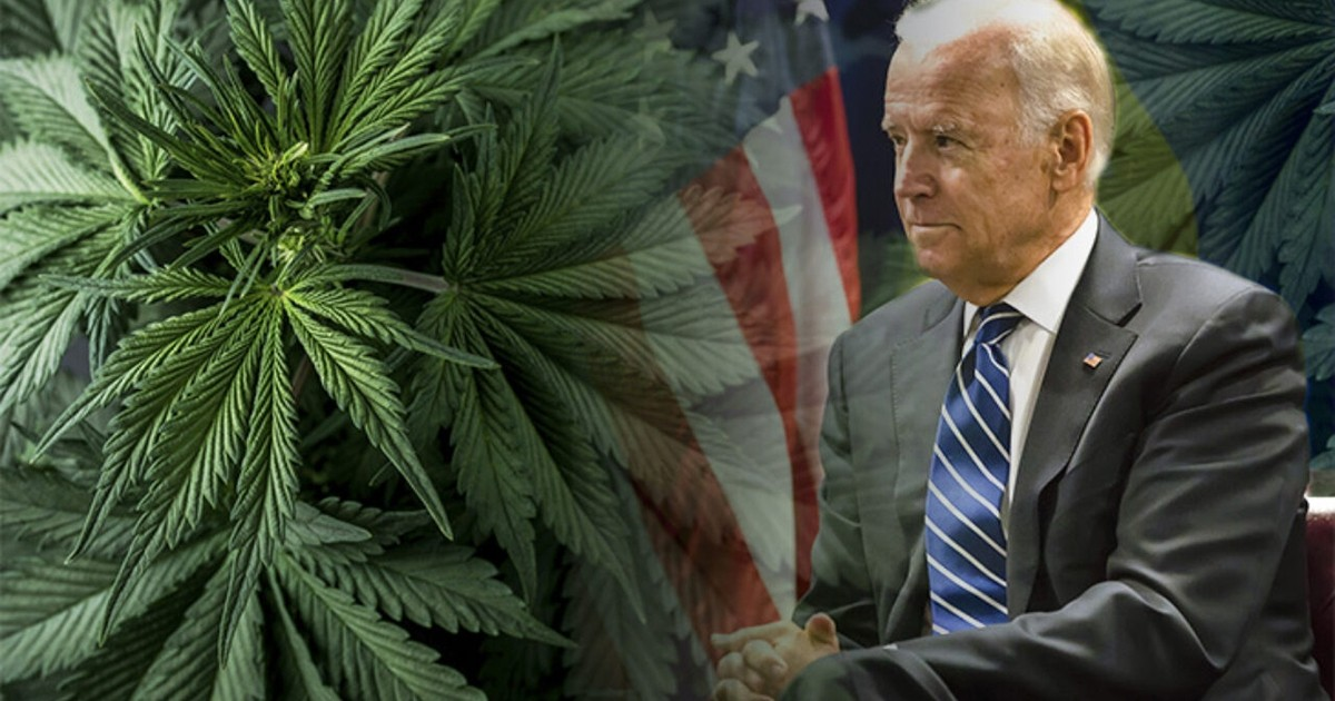 Biden White House Just Terminated and Suspended Employees for Smoking Weed in the Past