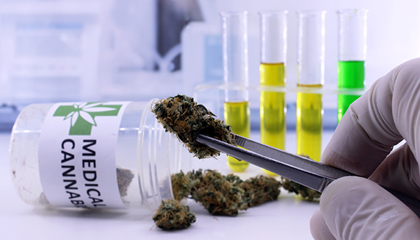 1620750742344 unc cannabis research projects