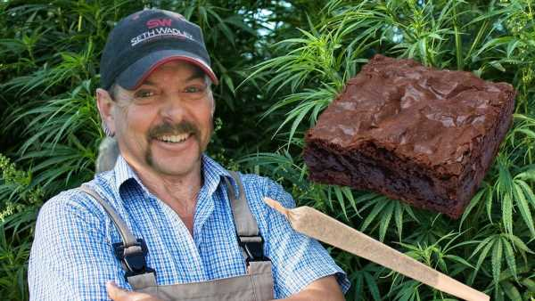 1623867885292 Joe Exotic Launching Own Cannabis Line Straight Outta Prison
