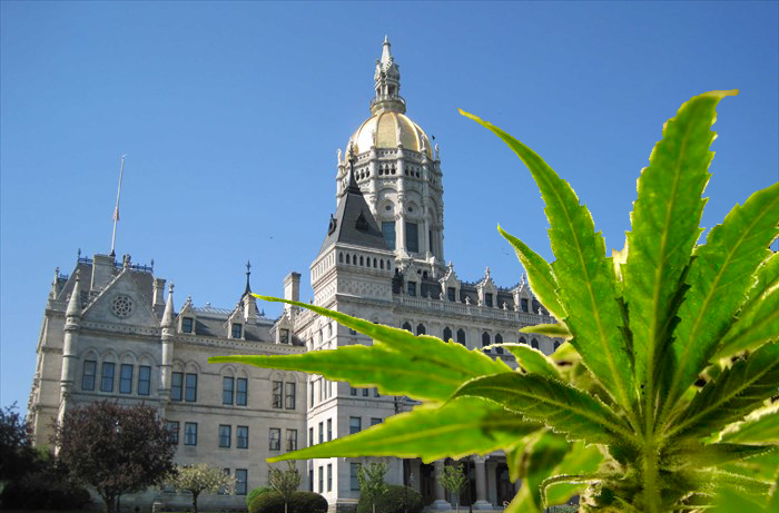 1624469660034 state capitol marijuana