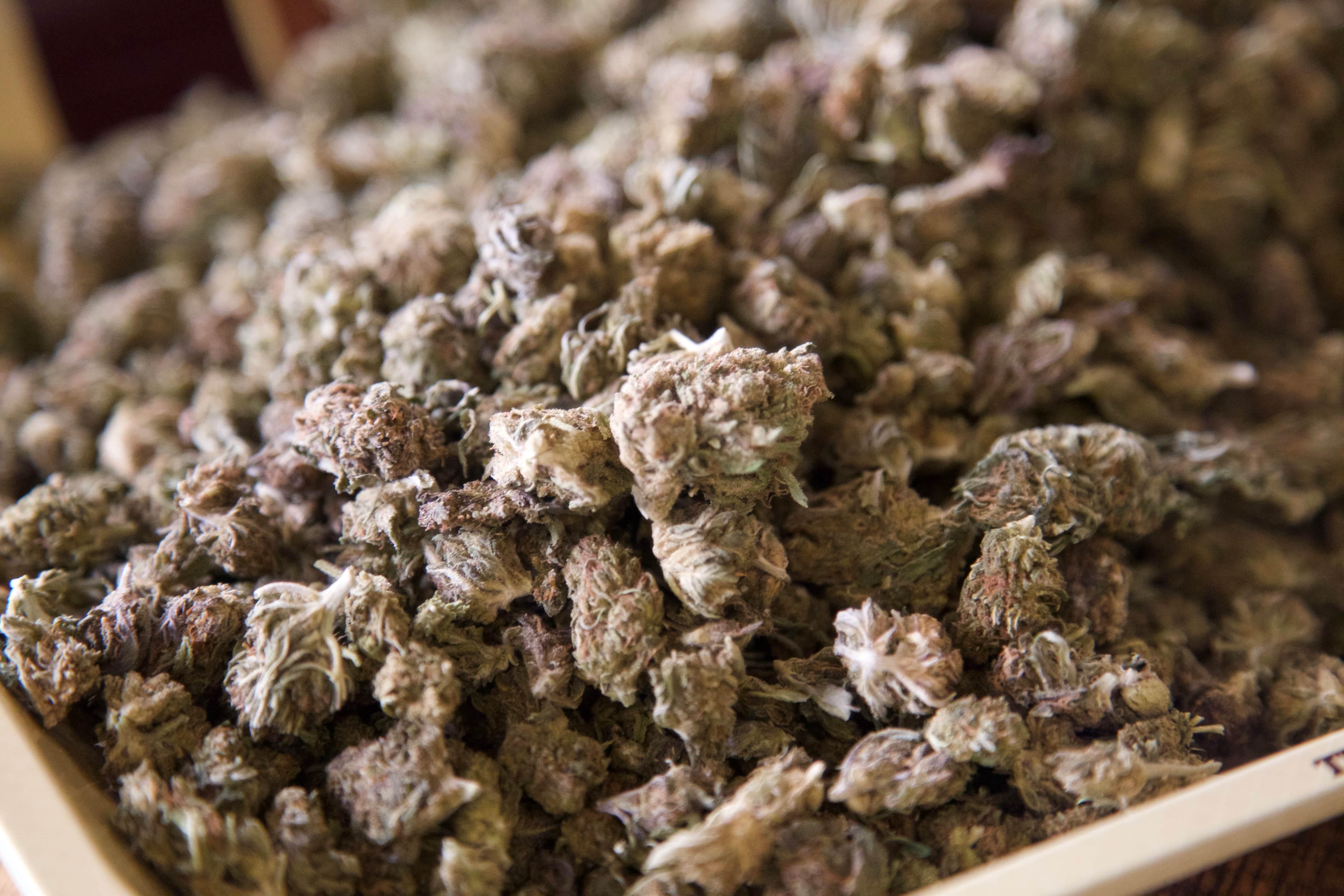 A Better Smoke: Are CBD Pre-Rolls the New Alternative to