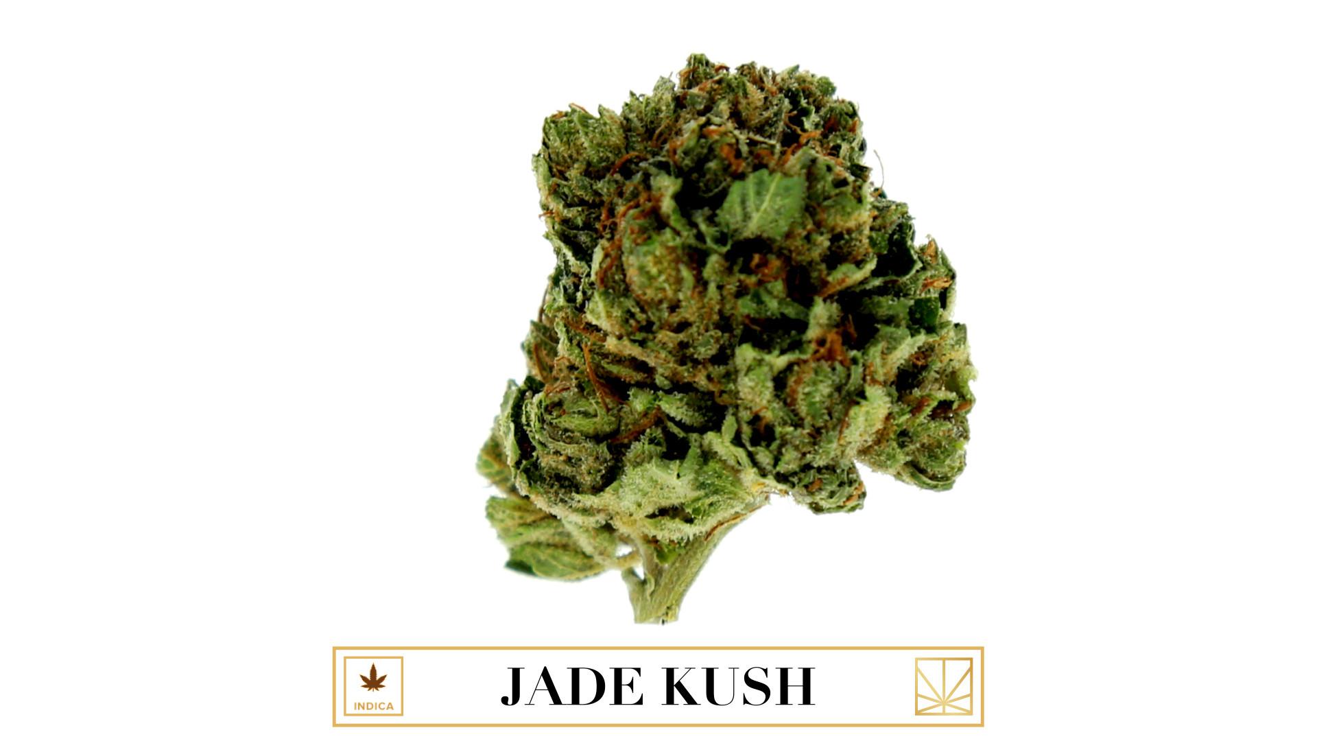 Jade Kush Nude Photos 79