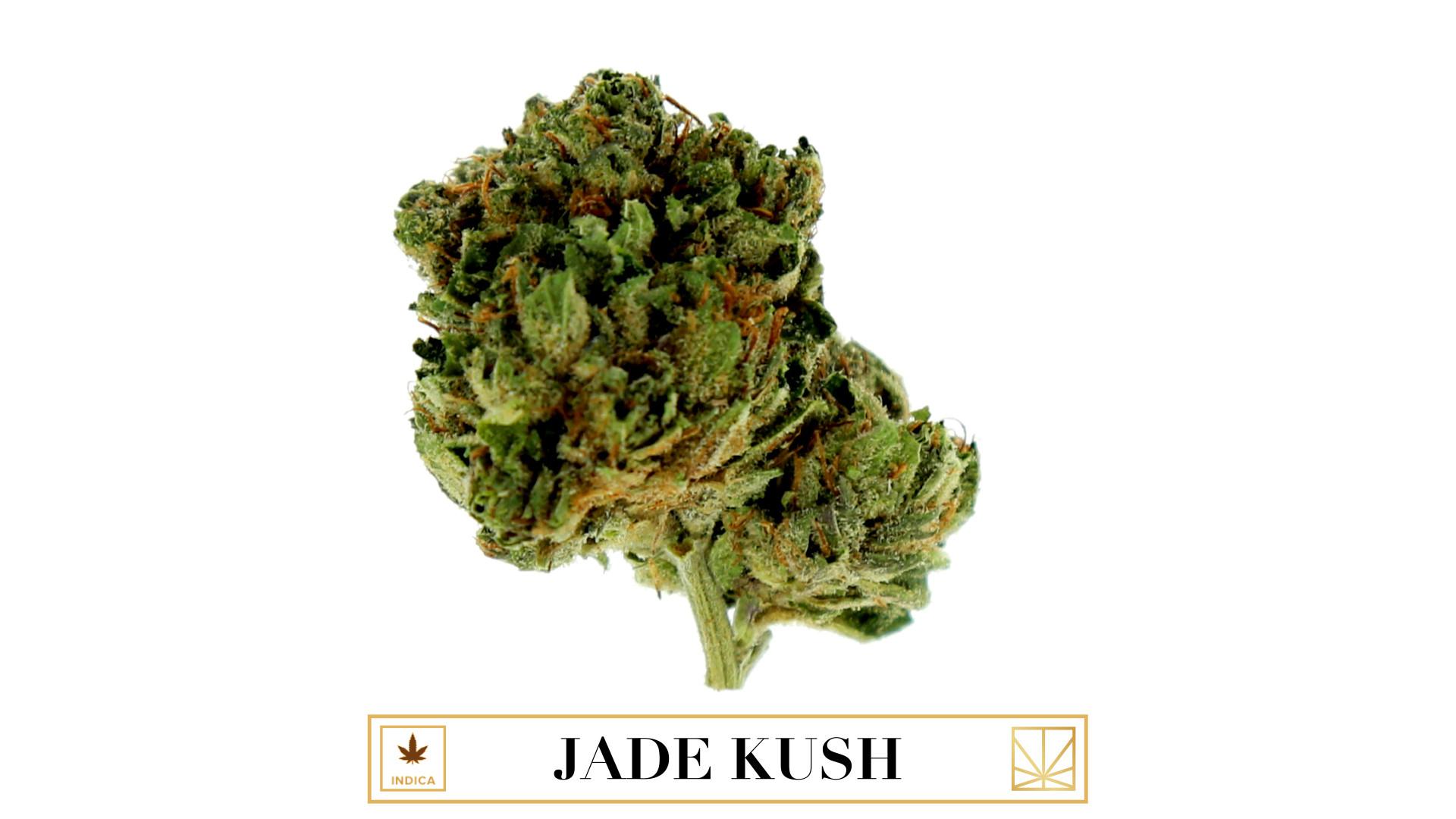 Jade Kush naked 976