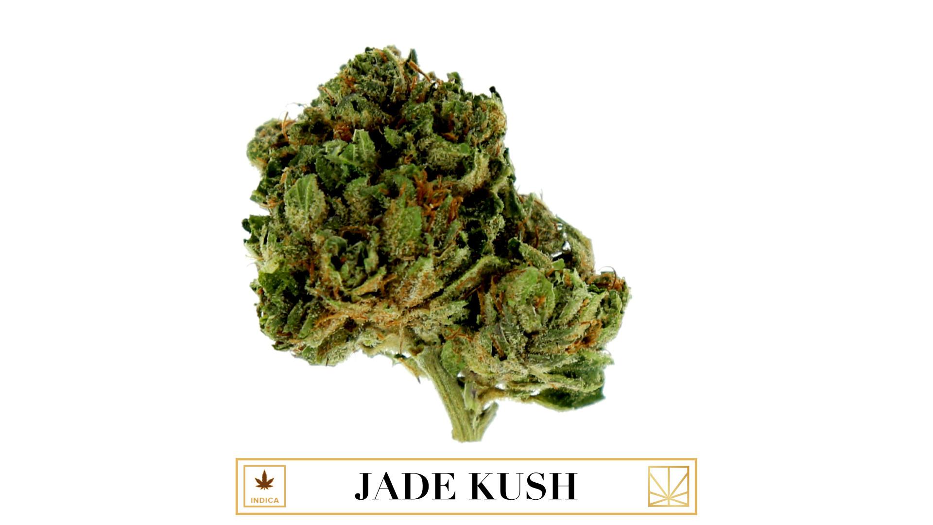 Jade Kush naked 695