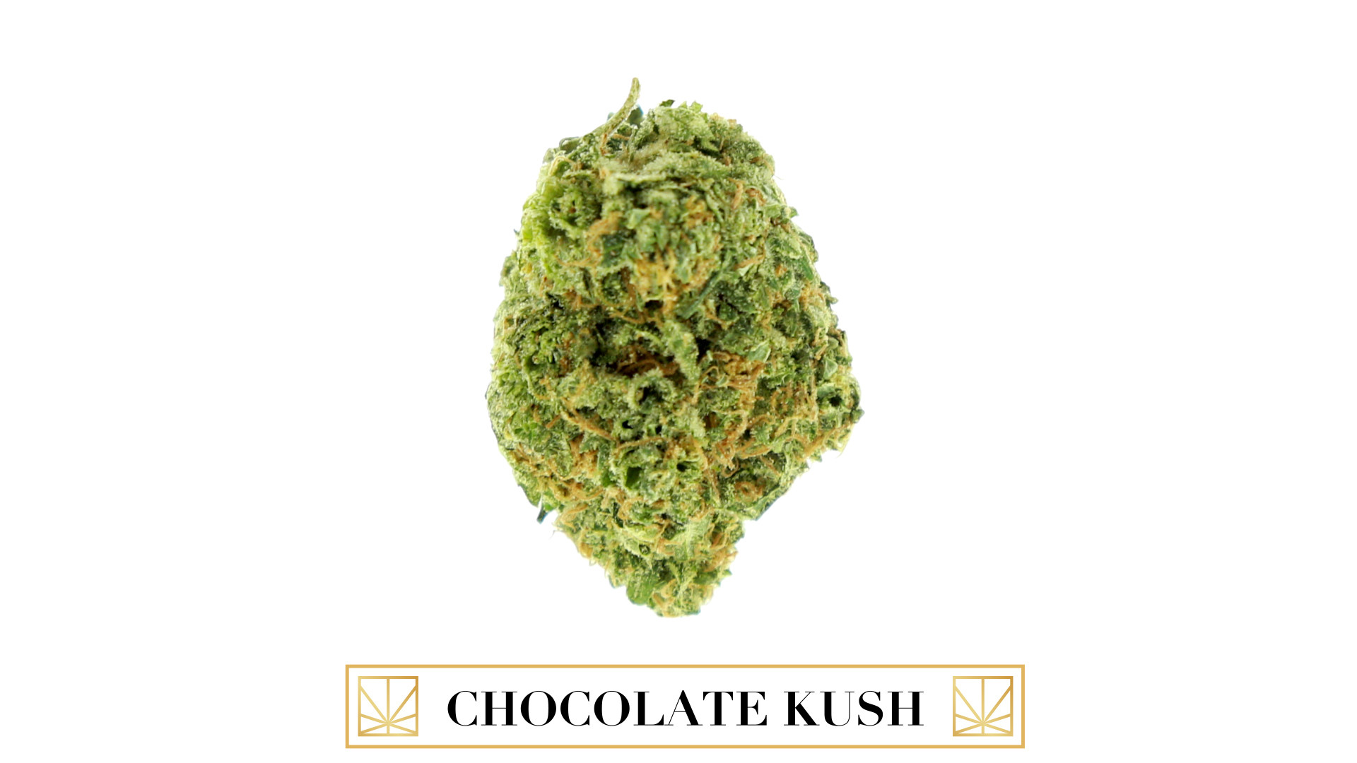 Chocolate Kush