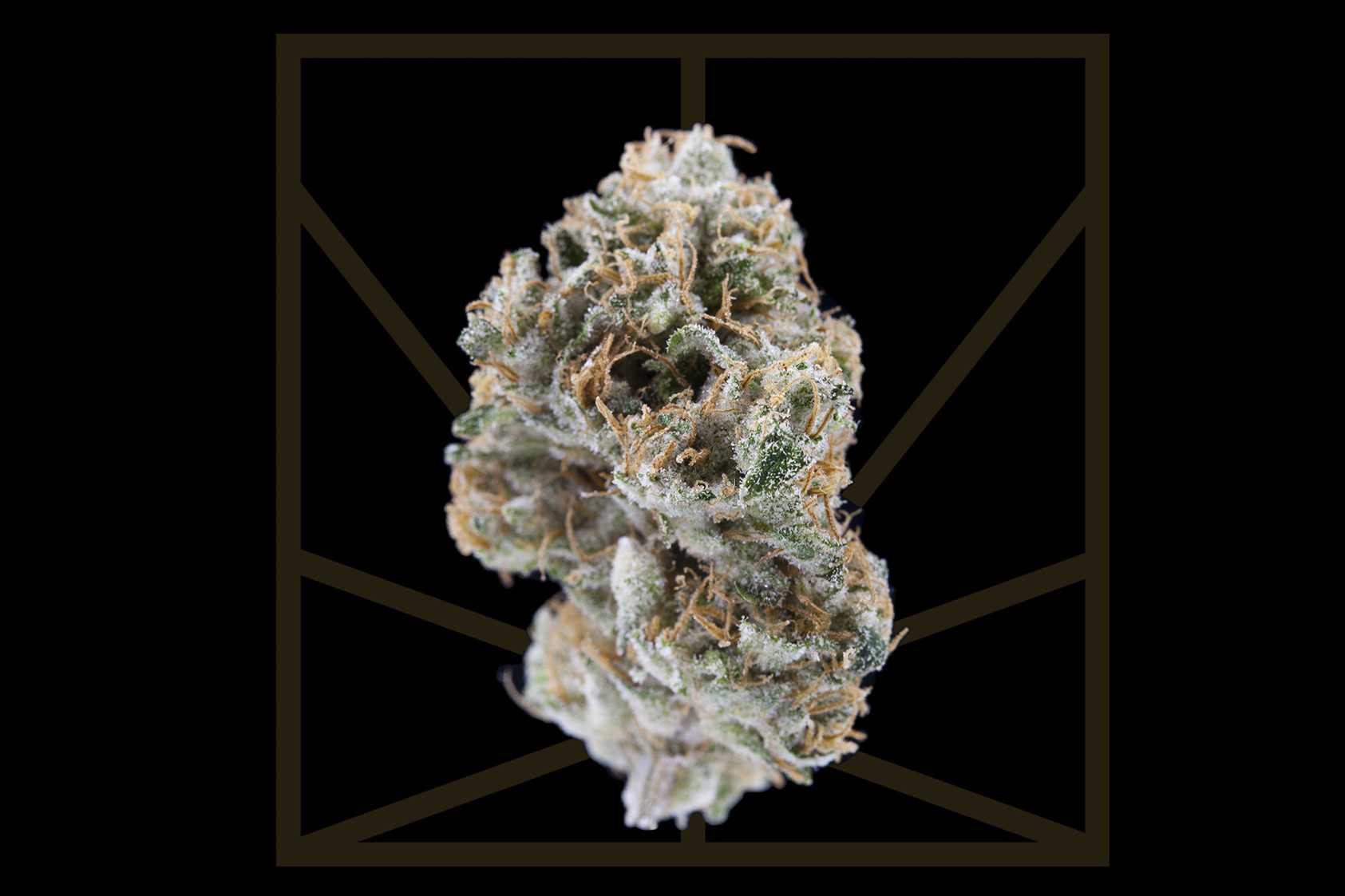 white widow cannabis strains hybrid happy effect