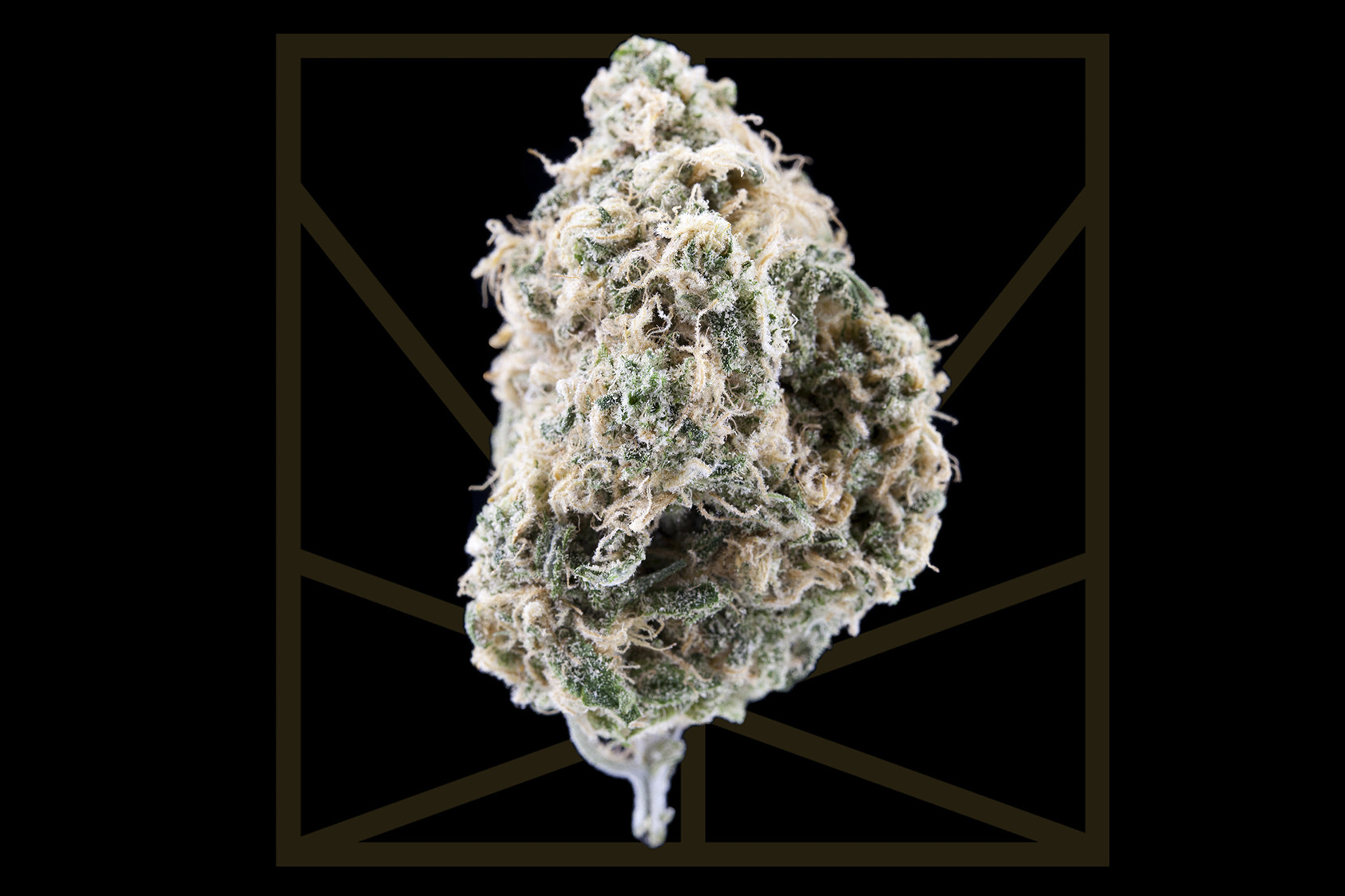 """<p><em>""""The remedy for everyhing, it seems that you are / The truth itself 'cause nothing else can take me so far.""""</em></p>  <p>For many cannabis connoisseurs, particularly on the West Coast, Blue Dream is a go-to strain. This sativa-dominant hybrid is a cross between indica Blueberry and sativa Haze. Blue Dream is a versatile strain that has become a dispensary staple. The heavy tranquilizing effects and body high of Blueberry are balanced with a cerebral energy boost from Haze, making this THC-rich strain perfect for daytime pain relief without couch lock. This flower's euphoric effects and candy-like sweet blueberry aroma, can make you feel like you're living in a """"Blue Dream"""" walking on cloud 9 while your pain and stress float away.</p>"""
