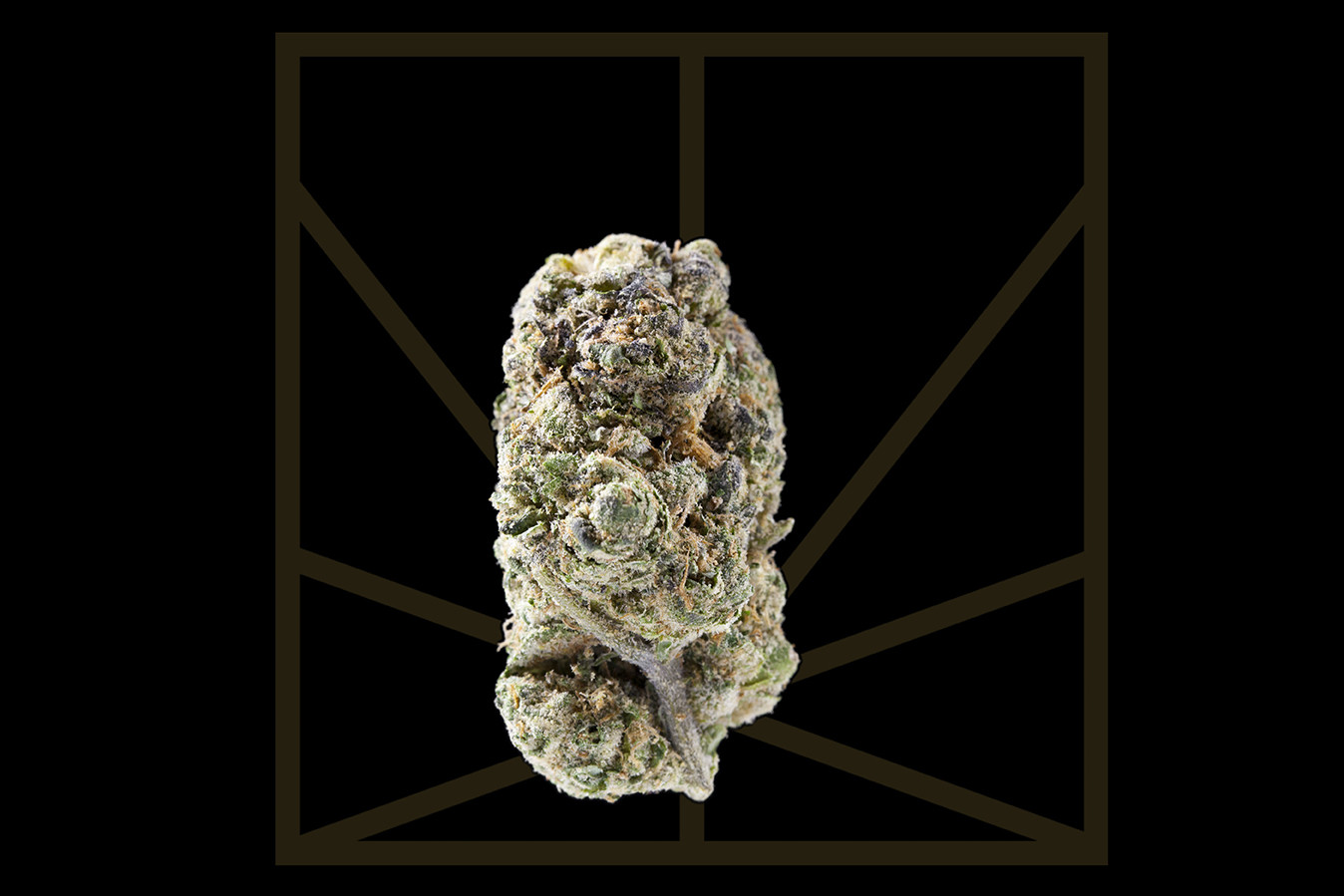 "<p><em>""Blow out your speakers, roll some more loud. That's the sound of the reefer, I think my parents is proud.""</em></p>